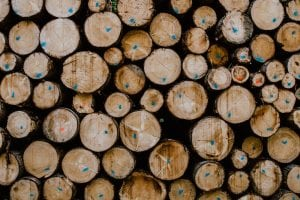 Abstract pattern created by logs shown end-on, with markings to categorise the logs.